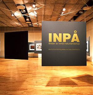 inpa1